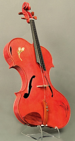 photo of Rivinus Viola on display in the Nationion Music Museum